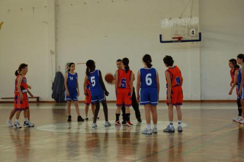 Basket BomJoao 07 8